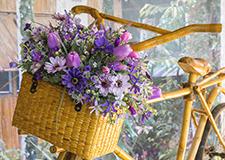 Ratanové stojany na květiny